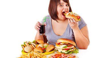 Alimentos Processados e a Obesidade