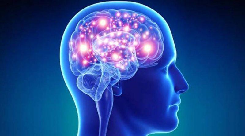 Cérebro e as decisões importantes