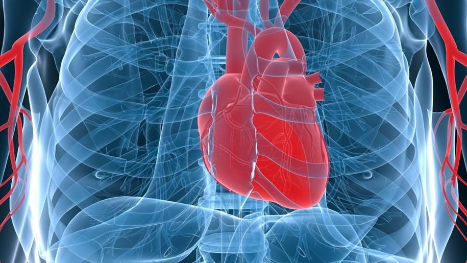 Diagnosticar doenças cardíacas