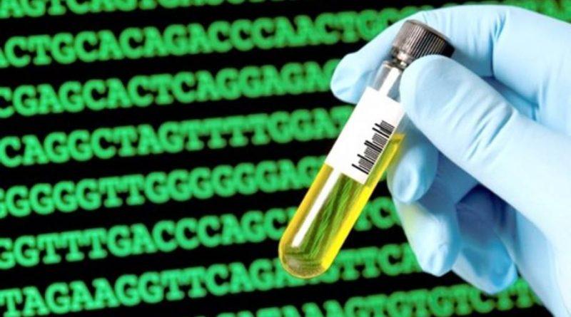 Genoma sintético para a vida artificial