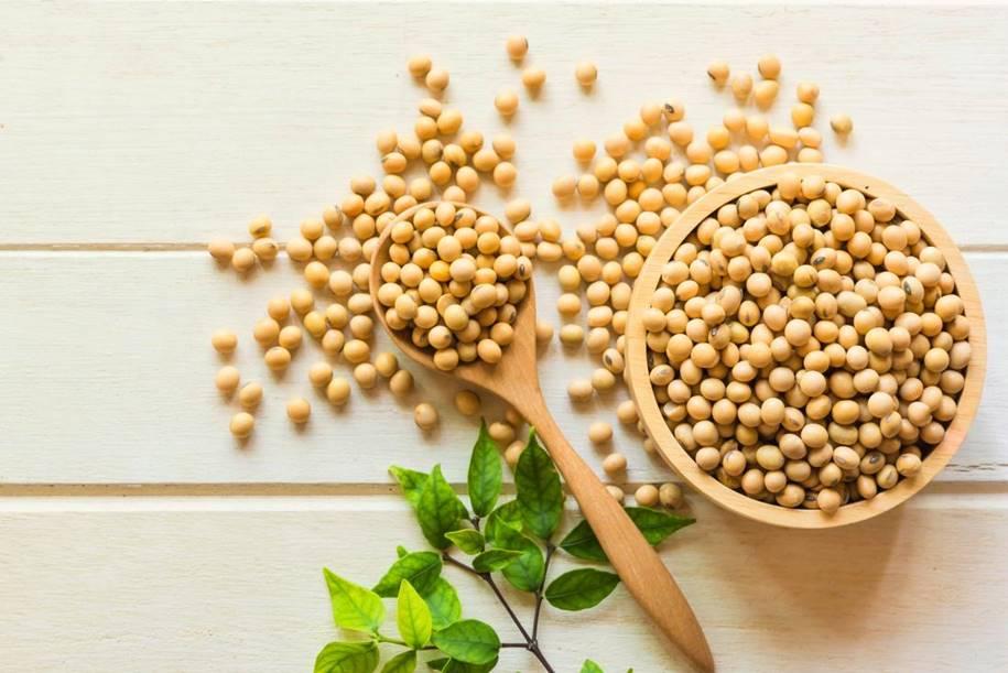 LDL e Proteína de Soja