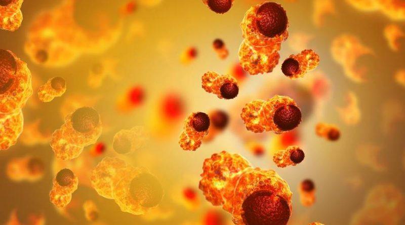 Proteína contra Câncer de Próstata