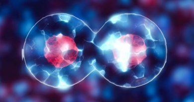 células do corpo conectadas como chips de computador