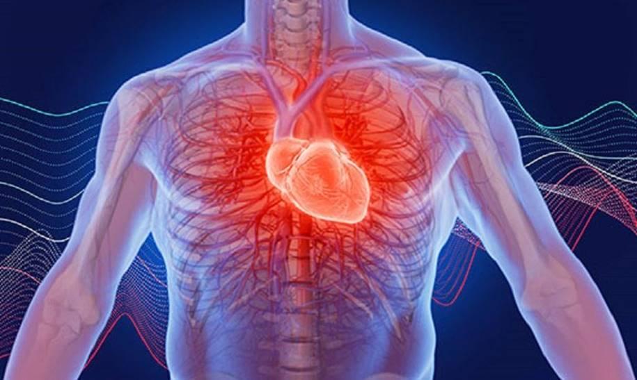 Como um coração saudável torna-se fraco