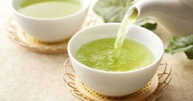 O chá verde é uma moda passageira ou de fato é bom para a saúde