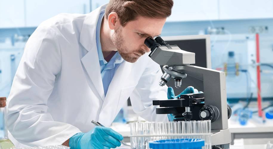 Pesquisa mostra que antibióticos podem inibir o linfoma da pele