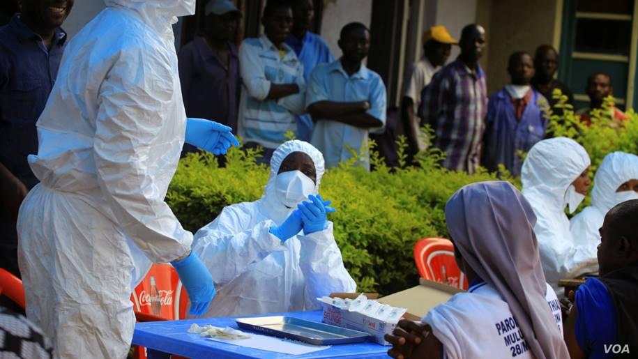 Droga antiparasitária pode oferecer tratamento para Ebola