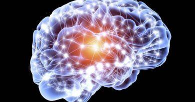Falta de oxigênio não mata as células cerebrais infantis como se pensava