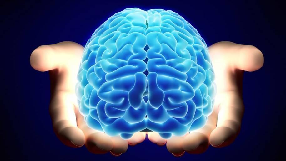 Método para avaliar a gravidade de lesões cerebrais em crianças