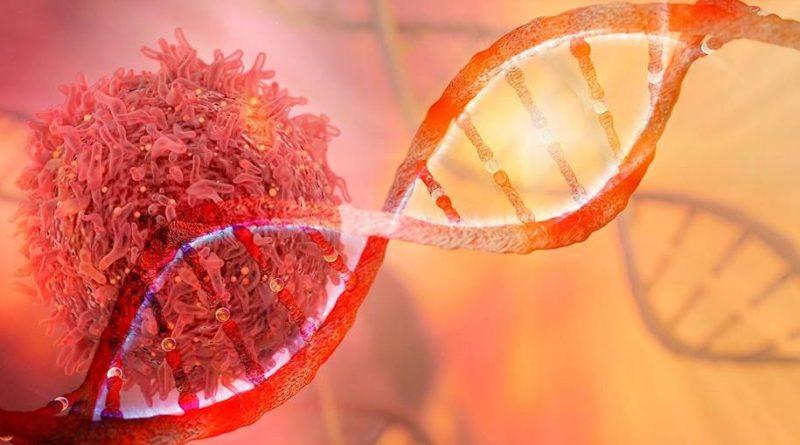 MYC - Estudo identifica falhas de muitos tipos de câncer