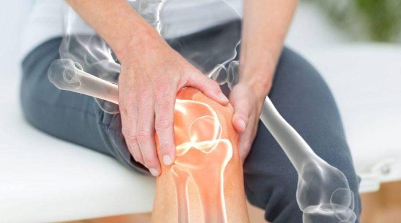 Novo fármaco que reverte a osteoporose em camundongos
