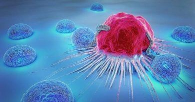 Descoberta a chave para o tratamento de diferentes tipos de câncer