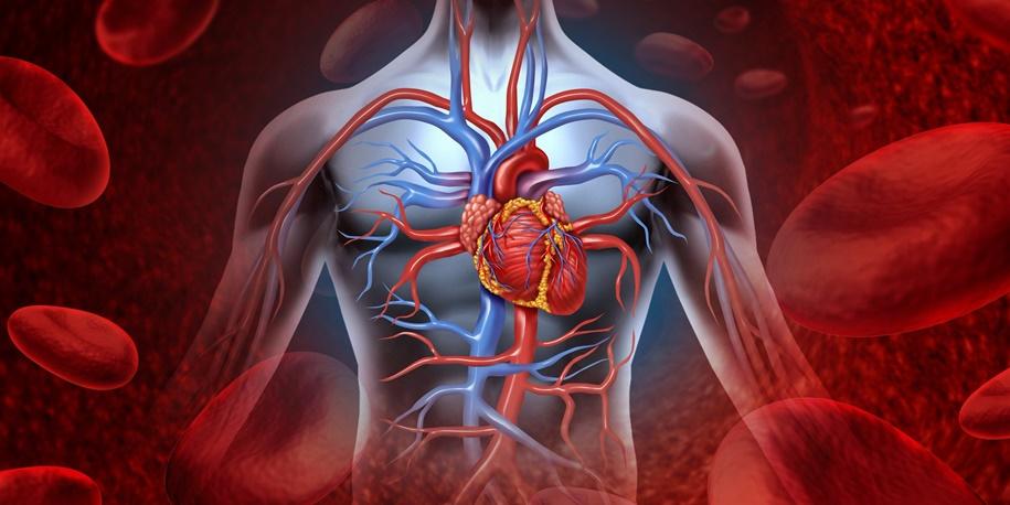 Medicamentos para diabetes tipo 2 podem reduzir doenças cardíacas