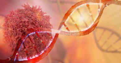 Pesquisadores encontram agora novos fatores para o câncer