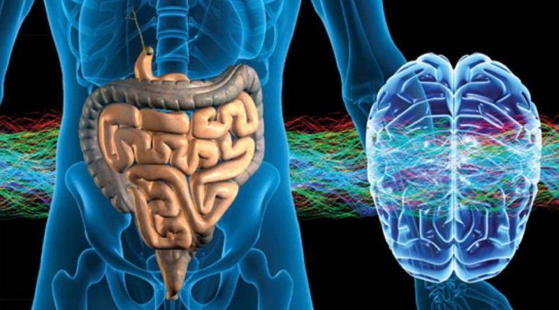 Sintomas do Parkinson - a doença pode se originar ainda no intestino