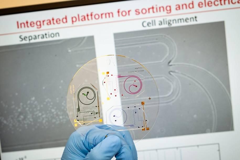 Chip mostra como o sistema imunológico do paciente está funcionando
