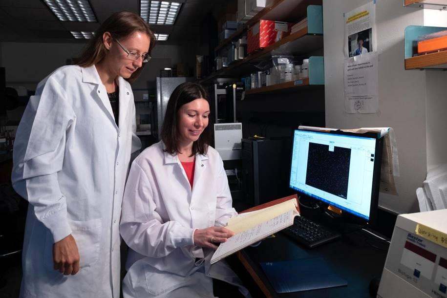 Tratamento da leucemia mielóide aguda - Natasha Kirienko e Svetlana Panina