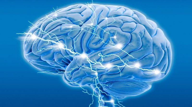 Cérebro pode se regenerar mesmo após lesão traumática