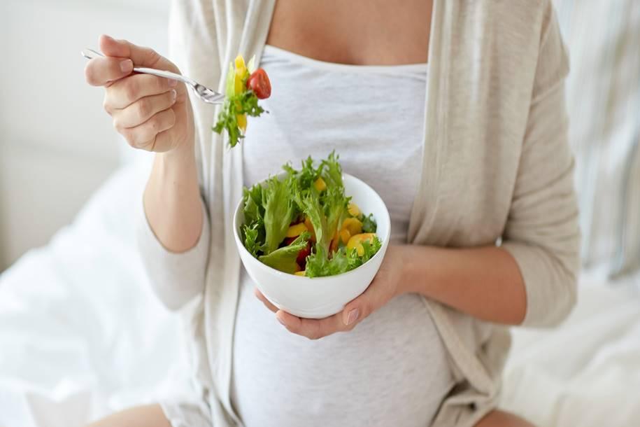 Dieta materna rica em gordura causa danos cerebrais no feto
