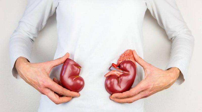 Dieta rica em proteínas podem prejudicar consideravelmente seus rins