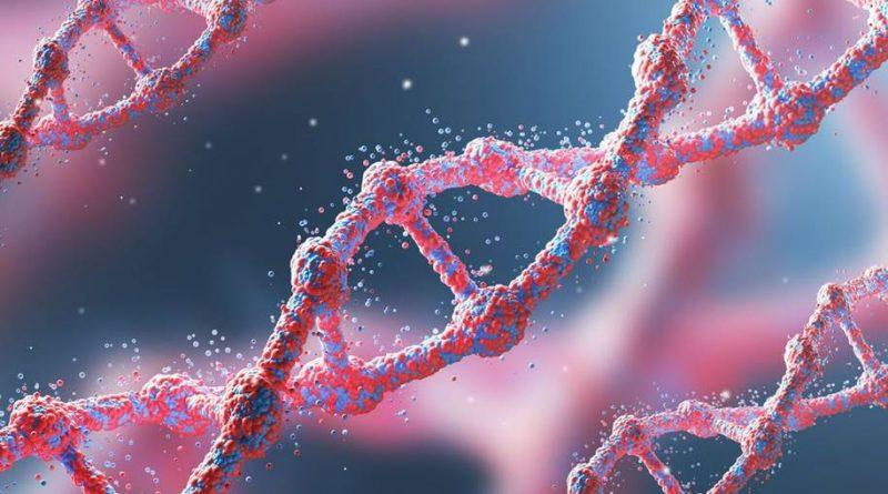 Descoberto novo princípio para ativação de genes do câncer