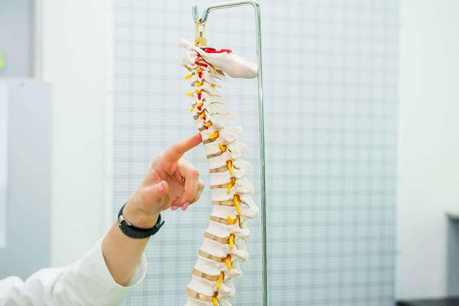 Esperança para restaurar movimento após lesão medular