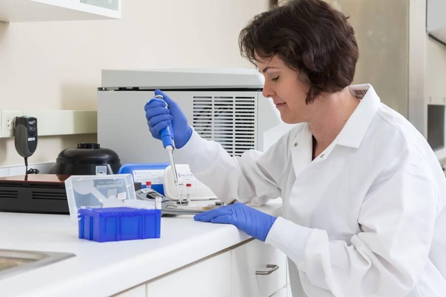 Herpes simples - edição de genes interrompe infecções
