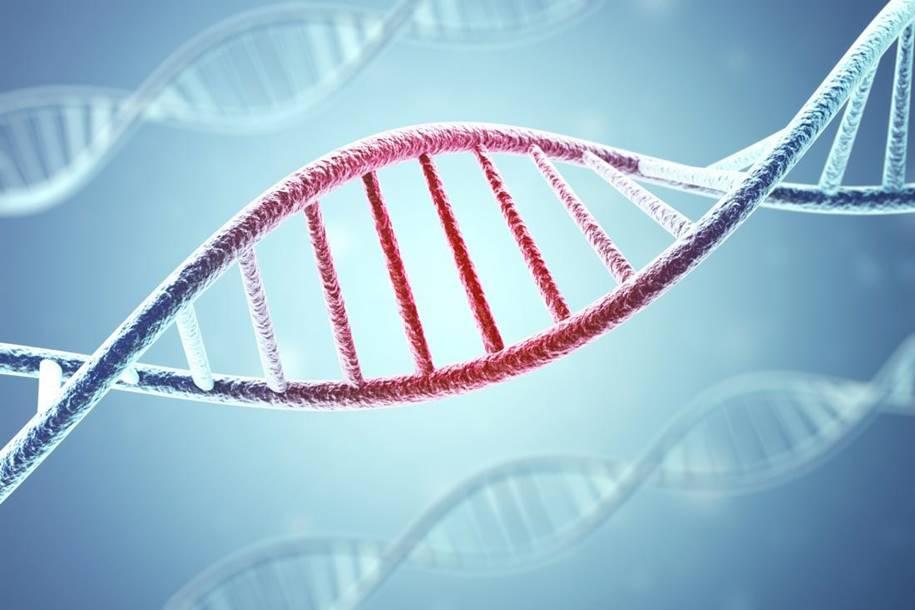 Hiperativação dos genes do câncer