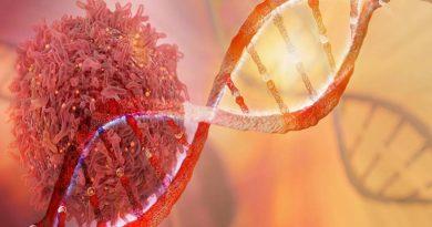 Identificado novo alvo terapêutico para o cânceres colorretais
