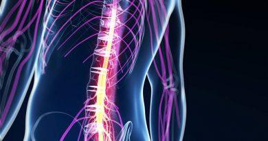 Nova esperança para restaurar movimento após lesão medular