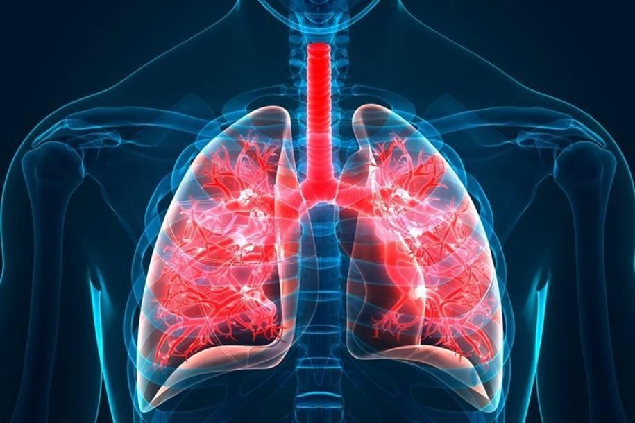 Novo estudo revela que a quantidade do sono está associado à fibrose pulmonar