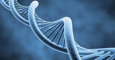 Teste de genoma detecta autismo antes dos sintomas aparecerem