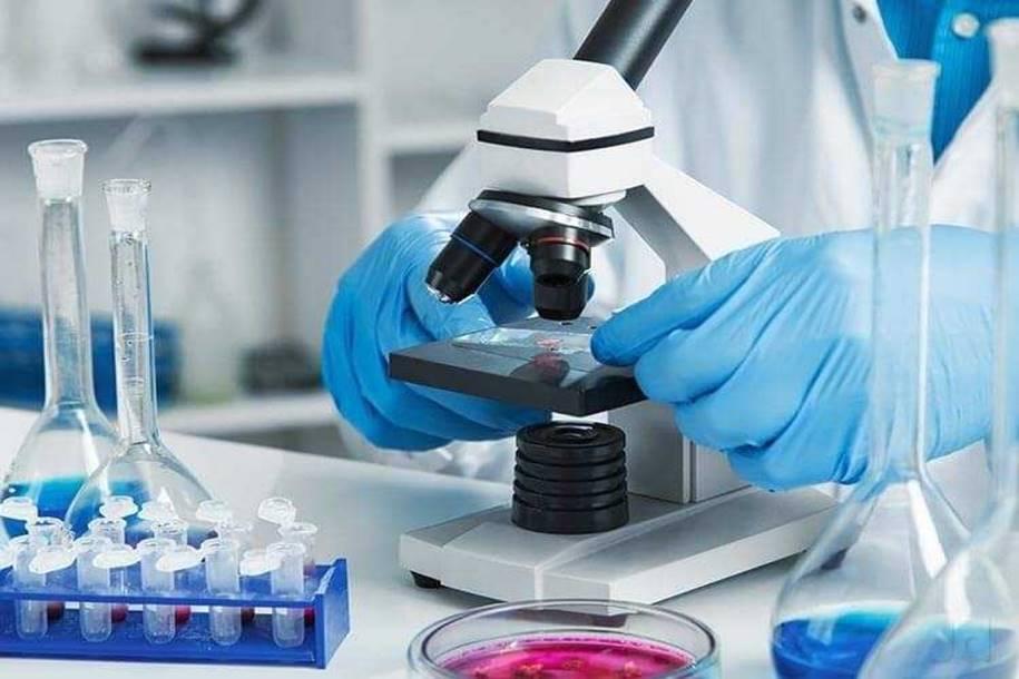 Cientistas desenvolveram um tumor artificial para testar medicamentos