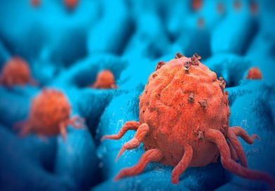 Combinação de duas drogas interrompe o crescimento das células cancerígenas