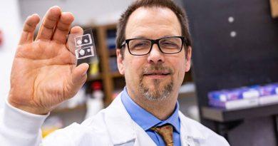 Desenvolvido modelo de córnea artificial para estudar lesões oculares