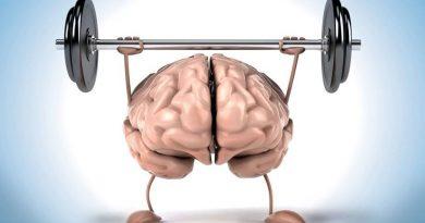 Estudo - praticar exercícios é ótimo para melhorar a memória