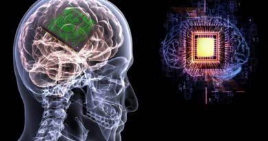 Chip recria barreira hematoencefálica para entrega de medicamentos ao cérebro
