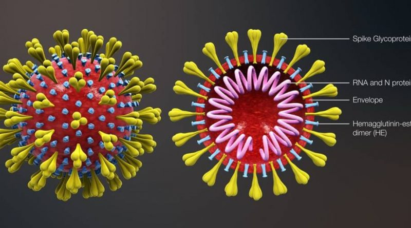 Instituto na Califórnia publica detalhes do genoma do coronavírus