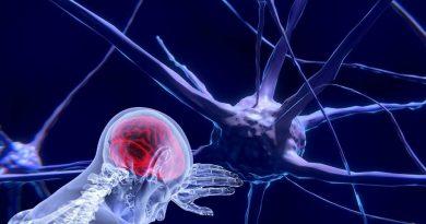 Proteína nos neurônios é a responsável pela sensação de dor