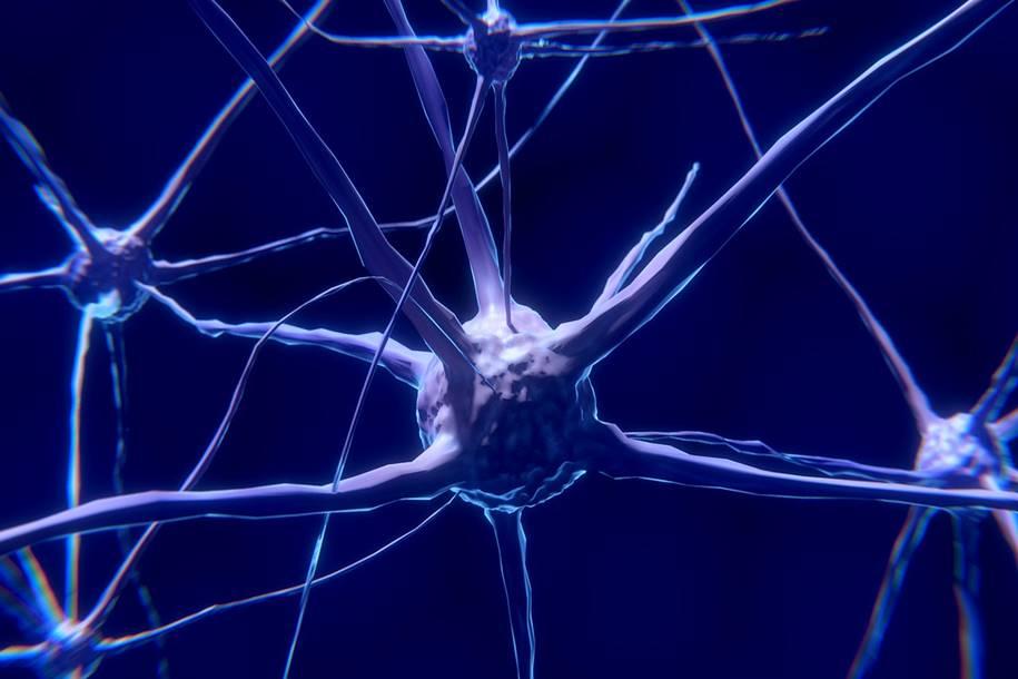 Proteína nos neurônios pode ser a responsável pela sensação de dor