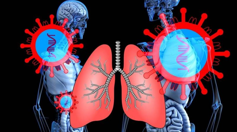 Como o coronavírus se conecta as células nos pulmões