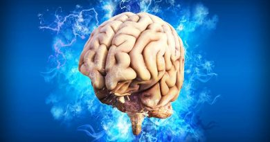 Encontrada regiões do cérebro que estimulam o combate ao estresse