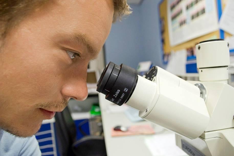 Nova ferramenta para realizar biópsias de câncer