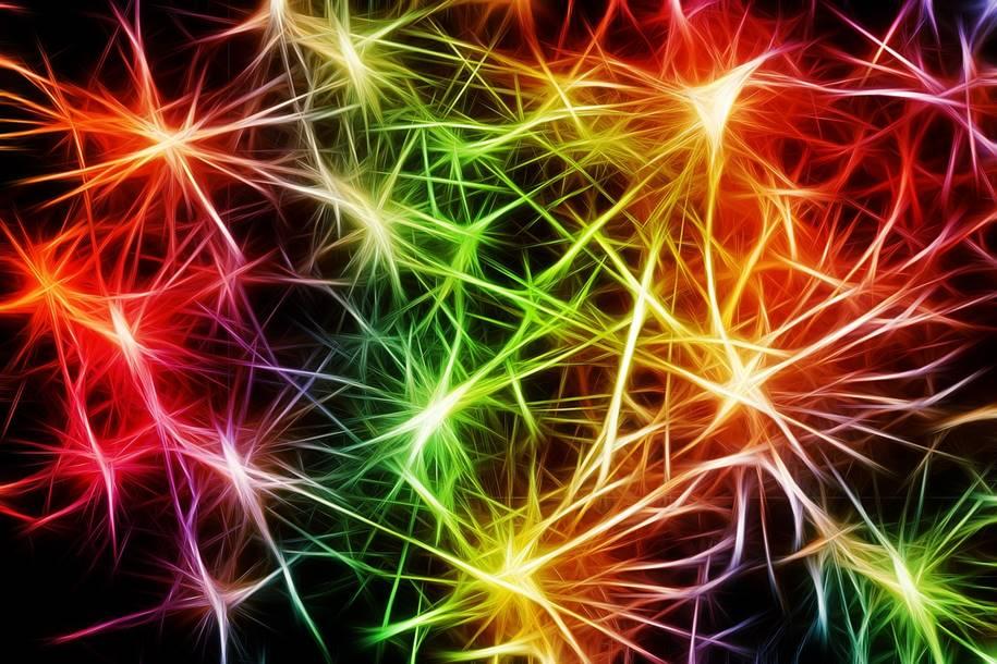 Novas regiões do cérebro que estimulam o combate ao estresse