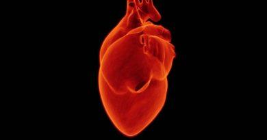 Estudo traz avanço no tratamento da doença valvar cardíaca