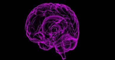 Imagem óptica pode ajudar a tratar câncer e doenças cerebrais