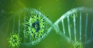 Identificada mutação do coronavírus nunca encontrada antes