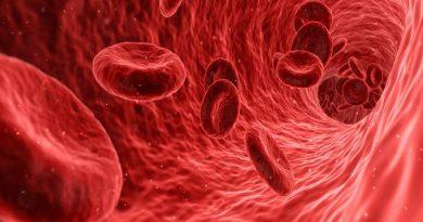 Nova ferramenta ajuda a identificar a causa de coágulos sanguíneos