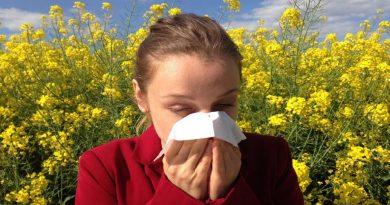 Descoberta células imunes que reduzem o risco de asma e alergia