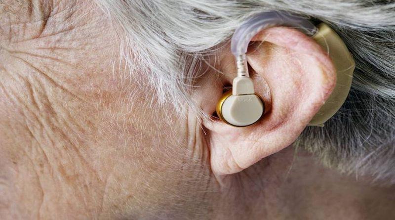 Genes em moscas da fruta pode ser a cura da perda auditiva